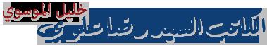 الكاتب السيد رضا علوي